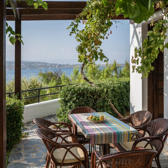 https://alianthos-suites.gr/wp-content/uploads/2016/02/Two-bedroom-apart_veranda-3-540x540.jpg